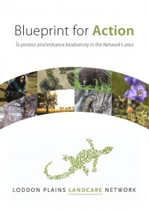 Blueprint for Action cover