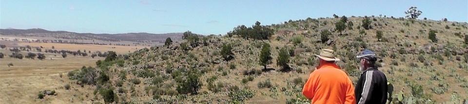 Mt Buckrabanyule