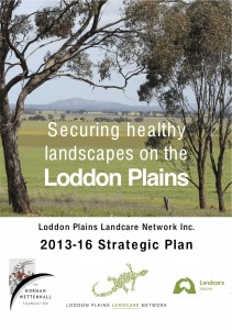 LPLN Strategic Plan cover