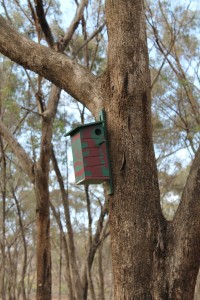 Mounted nest box