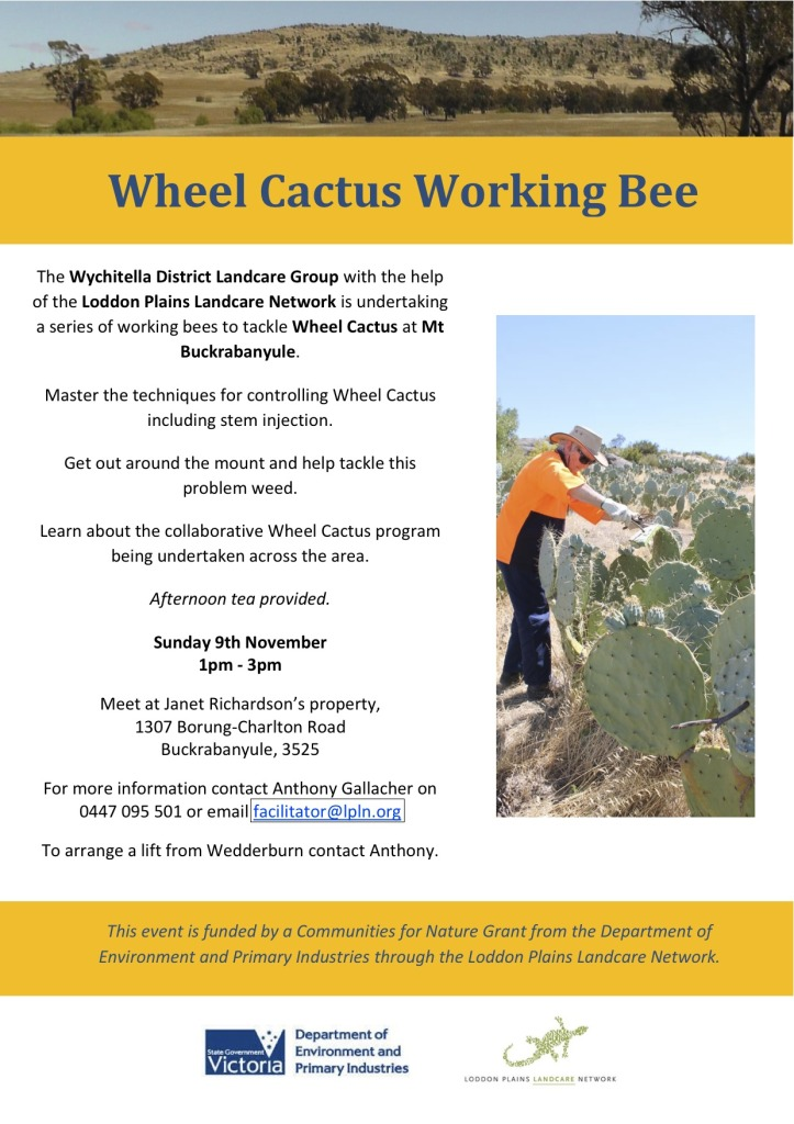 Buckra Wheel Cactus working bee flyer