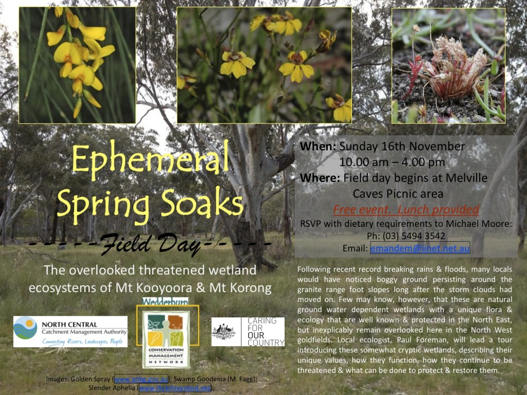 Ephemeral Soaks Field Day flyer