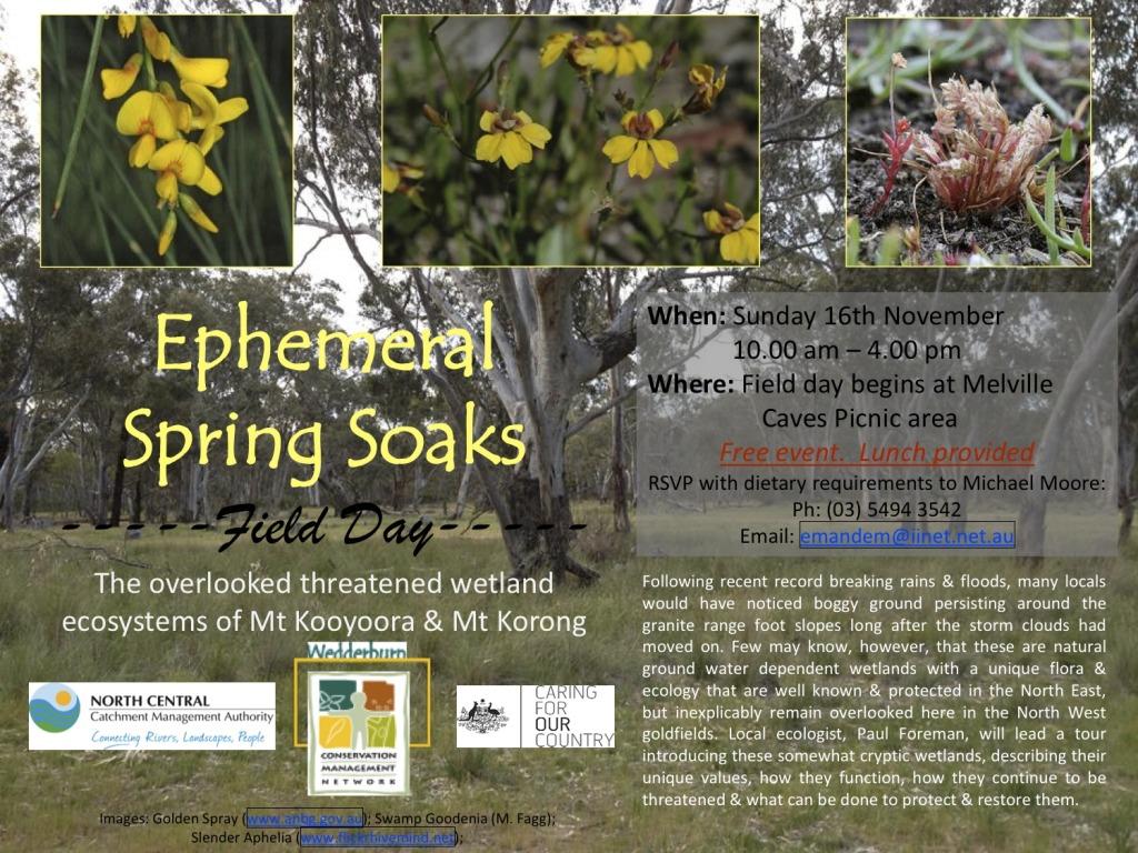 Ephemeral Soaks Field Day flyer