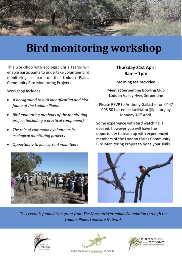 Bird monitoring workshop flyer 2016