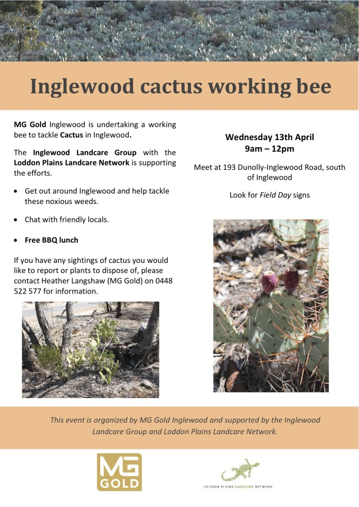 Inglewood cactus working bee flyer 13 April 2016