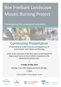 Mosaic Burning Project